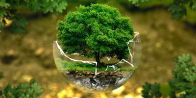 Vliv sádla na životní prostředí