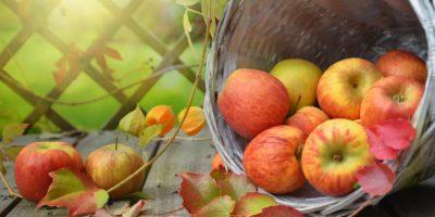 Jablečný štrůdl